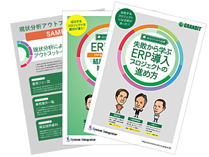 ebook_erp_guide