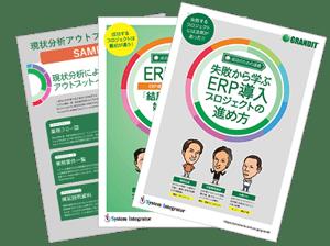 ebook_erp_guide